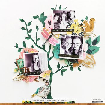 Family Tree – Crate Paper